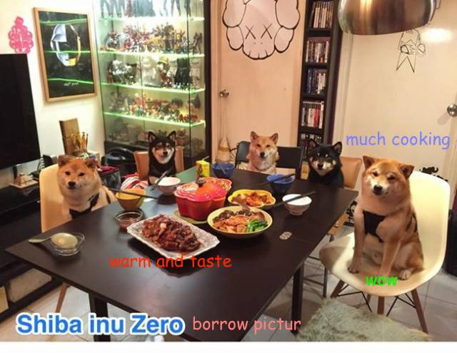 doge_cooked.jpg